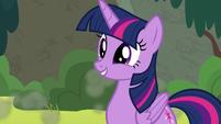 Twilight Sparkle with a cute smile S8E6