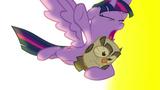 Twilight pelasti pöllönsä