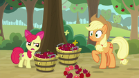 """Apple Bloom """"in a bunch of different lines"""" S9E10"""