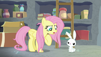 """Fluttershy """"I have responsibilities!"""" S9E18"""
