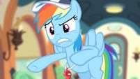 Rainbow Dash 'Are you nuts!' S4E05