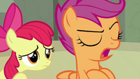 """Scootaloo """"if it weren't for her"""" S8E6"""