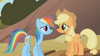 Applejack and Rainbow Dash3 S01E13