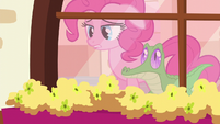 """Pinkie """"and I need it now"""" S5E11"""