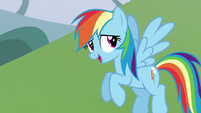 """Rainbow Dash """"does it really matter?"""" S5E22"""