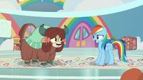 "Rainbow Dash ""the Pony Prance!"" S9E7"