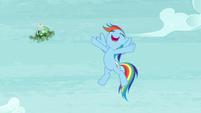 Rainbow spins Tank away S5E5