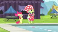 S04E20 Babcia Smith i Apple Bloom trenują przed zawodami