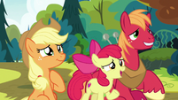 "Apple Bloom ""anything else?"" S7E13"
