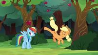 Applejack kicks an apple over Rainbow's head S6E18