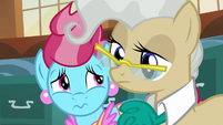 Mrs. Cake and Mayor Mare looking distressed S7E13