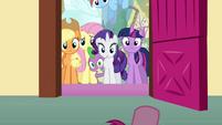 Pinkie Pie's view S3E3