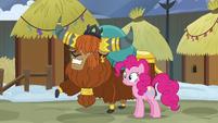 Prince Rutherford shows Pinkie Pie Yakyakistan S7E11