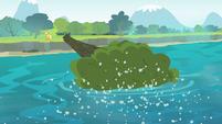 Tree falls onto water S4E20