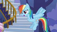 "Rainbow Dash ""you think you've got problems?"" S7E14"