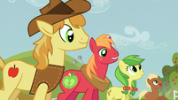 Raise This Barn Big Mac and Braeburn S03E08