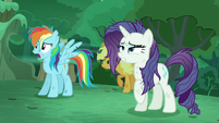 'RD' --The changelings attacked Ponyville!-- S5E26