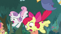 Apple Bloom and Sweetie Belle fall out of costume S9E12