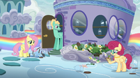 """Fluttershy """"I'm talking about Mom's flowers!"""" S6E11"""