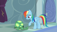 """Rainbow """"Which... is exactly what you are"""" S5E5"""