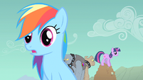 Rainbow Dash & Twilight sense S1E19