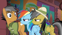 Rainbow and Daring glaring at Quibble S6E13