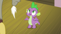 "Spike ""splendors of Hearts and Hooves Day"" S8E10"