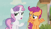 """Sweetie Belle """"trick a pony into drinking a love potion"""" S7E8"""