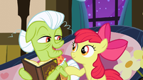 Apple Bloom asking Granny about the family memories S3E8