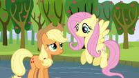 Applejack thanks Fluttershy S03E10
