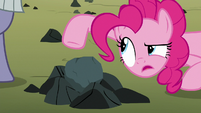 """Pinkie Pie """"I would not describe that"""" S8E3"""
