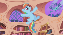 "Rainbow Dash ""that means the ticket is mine"" S1E03"