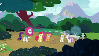 Rarity appears before CMC and Zipporwhill S7E6