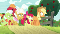"""Apple Bloom """"the Great Seedlin' was here!"""" S9E10"""