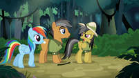 "Daring Do ""who are you again?"" S6E13"