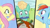 Fluttershy, Zephyr, and Rainbow split-screen S6E11