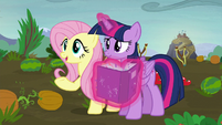 """Fluttershy """"what do you hope to get out of fighting?"""" S5E23"""