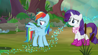 """Rainbow """"burns off my wing feathers"""" S8E17"""