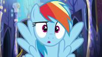 "Rainbow Dash ""wow"" S6E21"