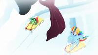 Rainbow and Tank sledding around the tree S5E5