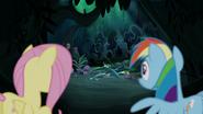 S06E11 Rainbow i Fluttershy obserwują Zephyra