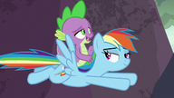 S07E25 Rainbow Dash i Spike przylatują do Smokolandii