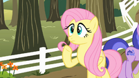 "Fluttershy ""Uh... Pinkie Pie...?"" S2E15"