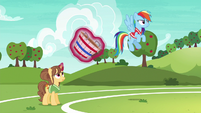 Rainbow and second tryout unicorn ready to play S6E18