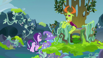 Starlight and Trixie approach Thorax's throne S7E17