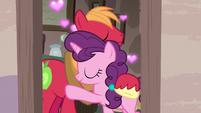 Big McIntosh and Sugar Belle cuddling S7E8
