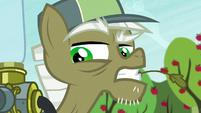 """Pest pony """"...twittermites"""" S5E04"""