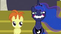 Princess Luna straining a forced wide smile S7E10