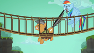 S06E13 Dash próbuje wyciągnąć Quibble'a z mostu