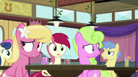 Spectator ponies looking confused S9E16